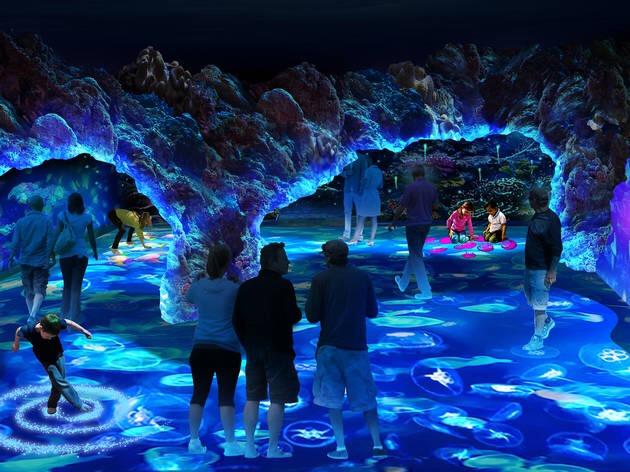 sea interactive